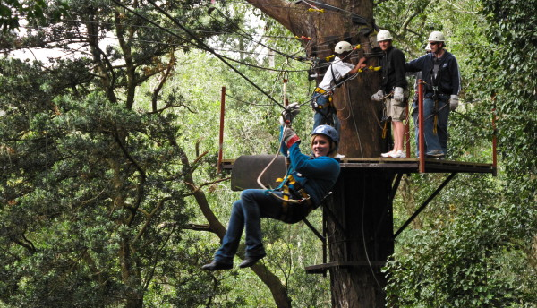 This ... & What to do on your Garden Route holidays - Canopy Tours